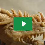 Drachenkopf basteln / HowTo make a dragon's head - Erza Cosplay 3
